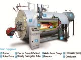 Oil & Gas Fire Tube Boiler